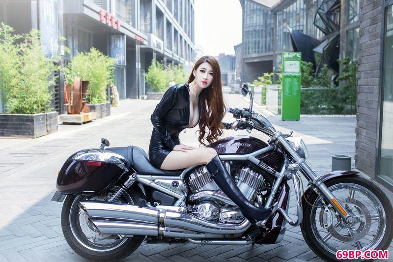 冷酷的广告模特陆瓷_斗牛犬图片